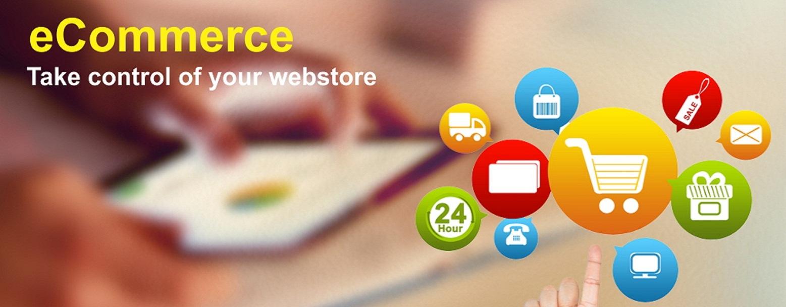 Basic E Commerce Website Web Site Designing Web